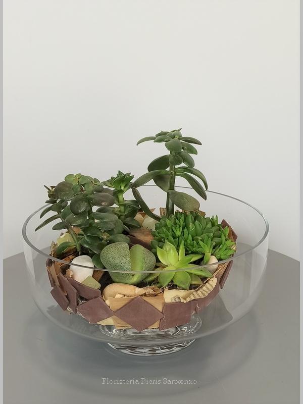 copa cristal cactus