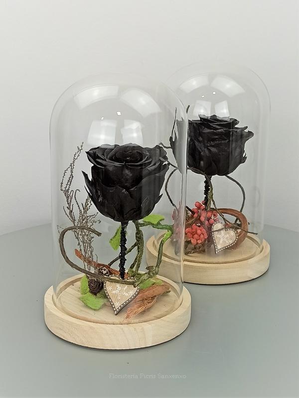 rosa negra en cupula de cristal