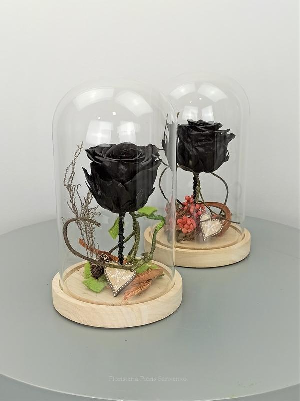 rosa negra preservada en cúpula de cristal