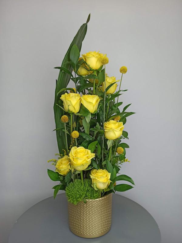 Rosas en Sanxenxo